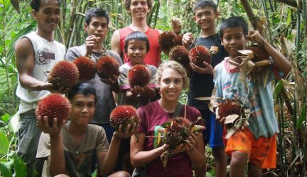 Red Jungle Durian (D. Dulcis) with the Ibans | Kalimantan