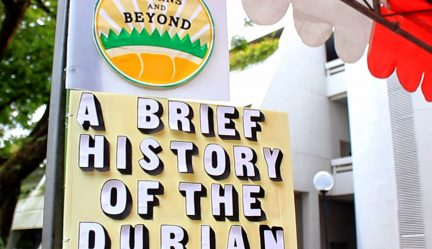 Photo Tour of A Brief History of Durian Exhibition | Singapore