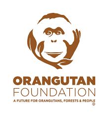 orangutan-foundation