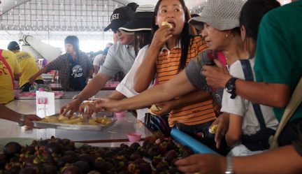 Four Ways Thais Cook Durian At Chanthaburi Fruit Festival, 2015 | Chanthaburi, Thailand