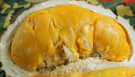In Memory of Philippines Durian Farmer Severino Belviz