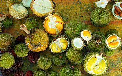 Orange and Yellow Wild Durians at Saratok Rest Stop, Sarawak